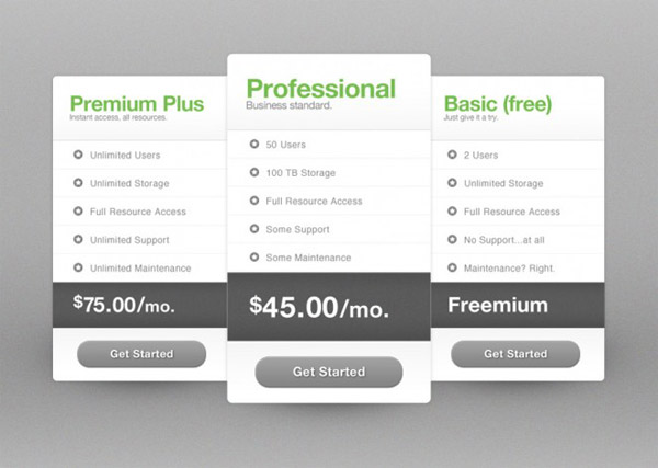 Pricing Tables Professional Product Options - www.redashes.com - download now